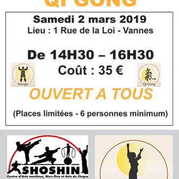 Stage de Qi Gong : samedi 2 mars 2019