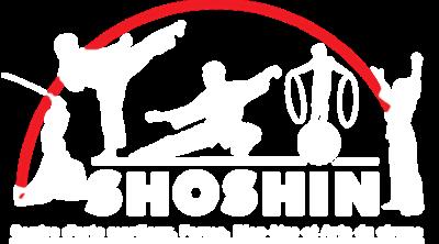 Association Shoshin Vannes
